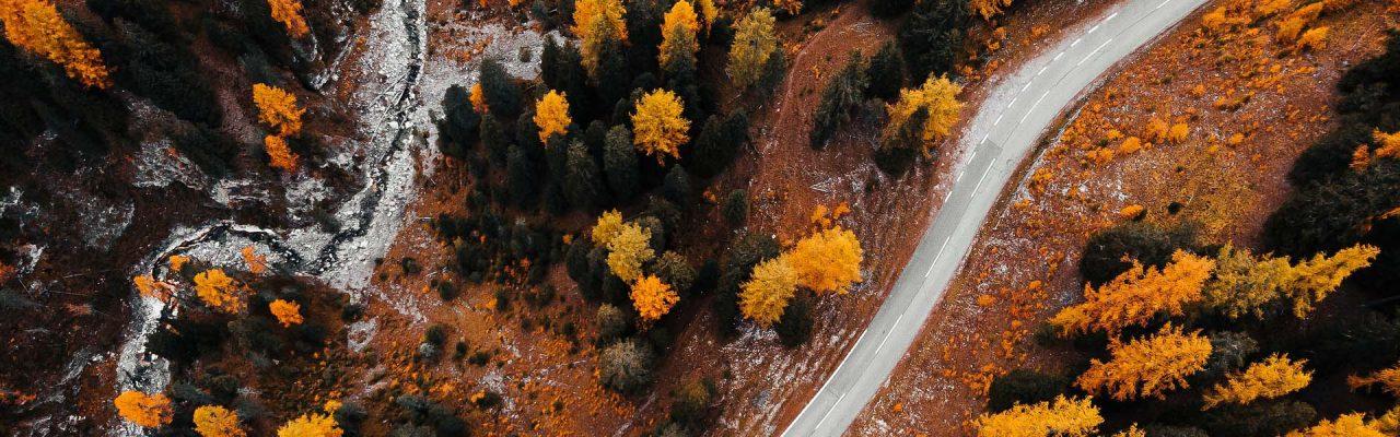 carreta_otoño